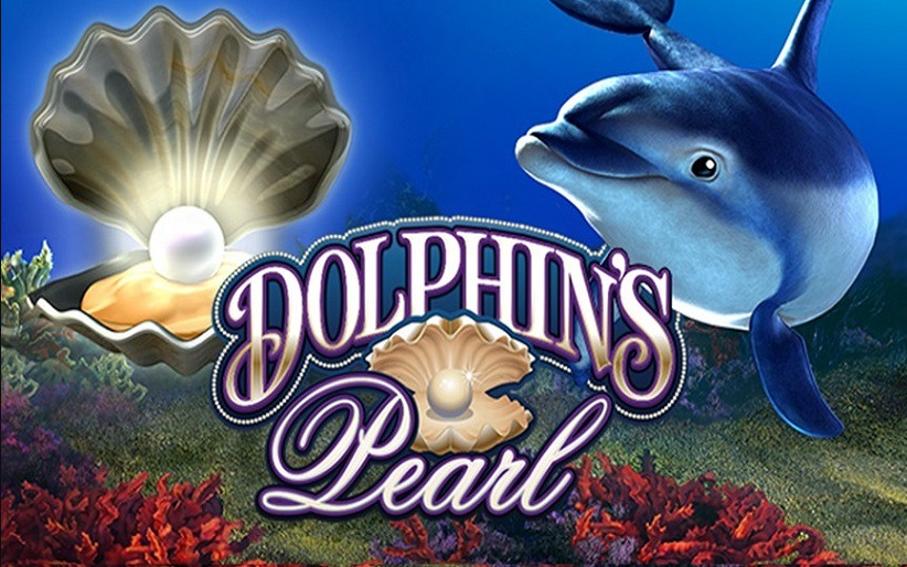 Dolphins Pearl Full