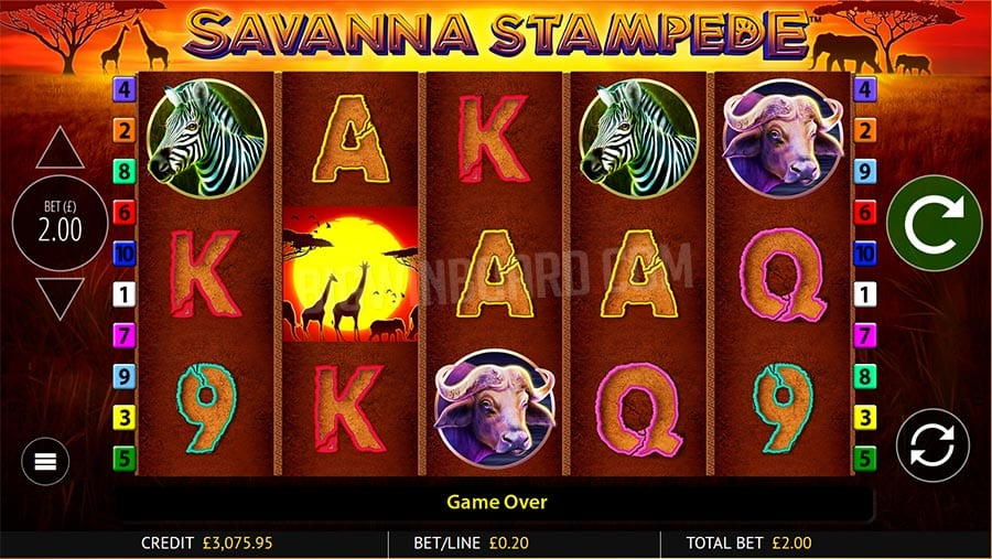 Savanna Stampede Slot Review