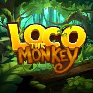 Loco the monkey Slot Logo