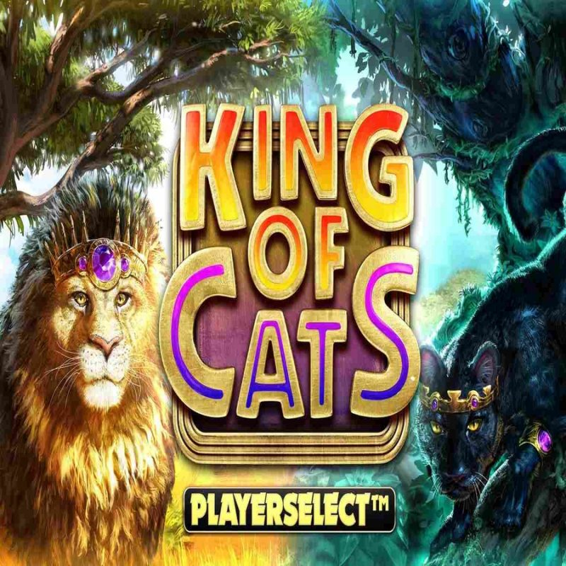King of Cats Megaways Slot Logo